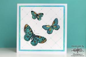 mother of butterflies1